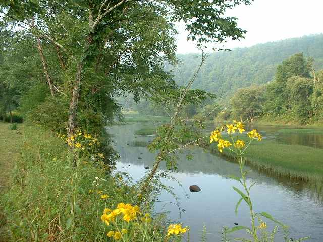 Greenbrier Downriver